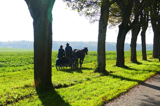 Pferdekutschfahrt in Moritzburg - Wir lieben Dresden